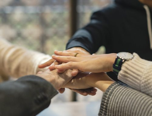 Sachsens Landeskulturverbände wählen neues Sprecherinnenteam